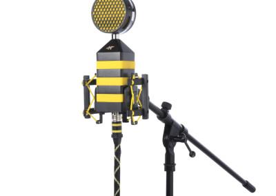 Kingbee on mic stand
