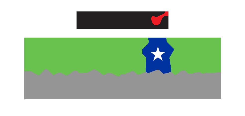 Veterans Initiative Logo 2017