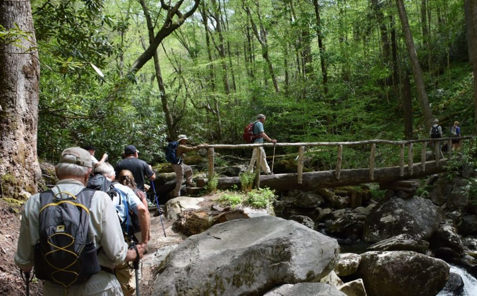 Things to do in Pigeon Forge - Hiking