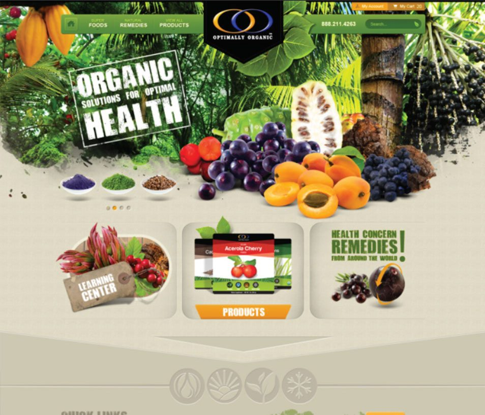 health-food-web-design