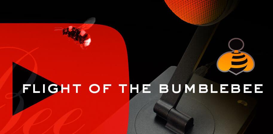 flight-of-the-bumblebee-screen